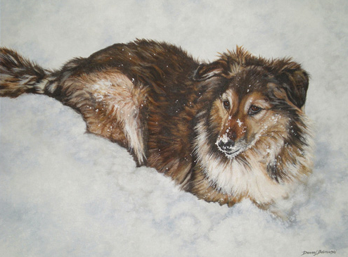 Acrylic Painting  by Donna Bobrowski of a mixed breed collie in the snow.